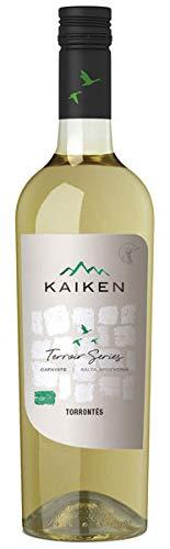Kaiken Terroir Series Torrontes 2019 (1 x 0.75 l)
