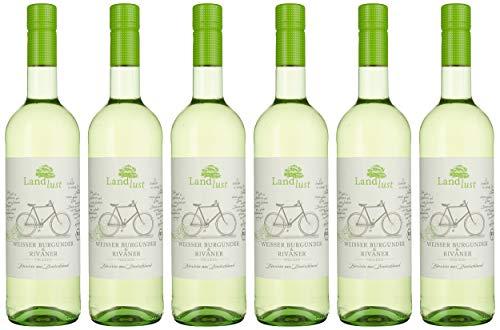 Landlust Weißer Burgunder & Rivaner BIO Weißwein Trocken ( 6 x 0.75l )