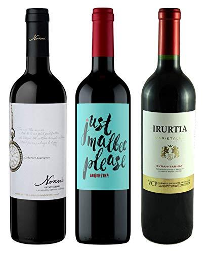 Atlantik Weine, Südamerika Einstiegspaket mit Rotwein aus Argentinien und...