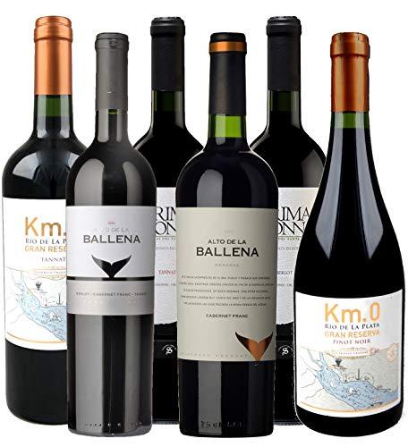 Atlantik Weine, Südamerika Premium Weinpaket mit Rotwein aus Uruguay,...
